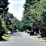 Wide residential street in Portland, Oregon, neighborhood; photo by Wayne Senville