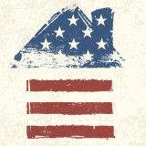 Icon image of house shaped like an American flag