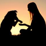 woman teaching dog tricks