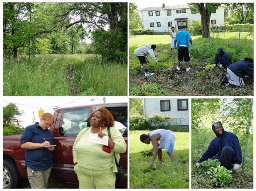 Community garden in Flint, Michigan