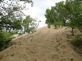 Mt. Baldy dune formation along Lake Michigan in Indiana