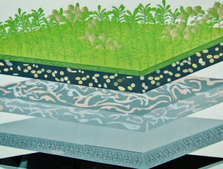 Drawing of layers on assembly plant's green roof