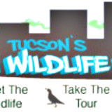 Tucson's Wildlife Walk