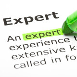 """crop of definition of """"expert"""""""
