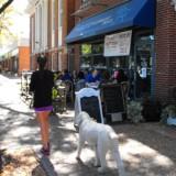 Brick pavers line sidewalks in West Hartford Center