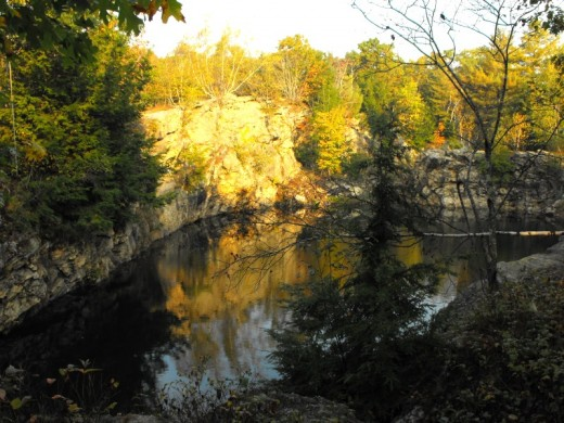 Inside the Cathance River Preserve