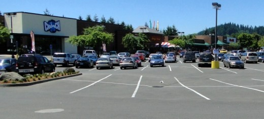 Shopping plaza on Division Street