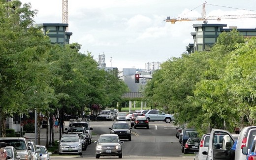 Intel's huge Ronler Acres facility looms in the background; photo taken a block from light rail station, looking through center of the Orenco development towards Intel.