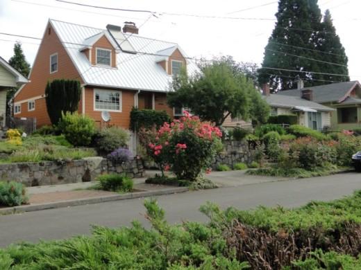 Planting strip in a Portland, Oregon, neighborhood