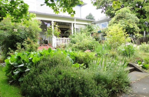 Garden in front of house in southeast Portland.