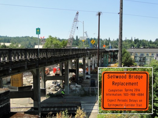 Elaine Cogan helped moderate meetings of the Sellwood Bridge project's Community Task Force, which met 23 times throughout the course of the planning effort related to reconstruction of this major Willamette River crossing linking in Portland.