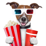 graphic of a dog holding popcorn watching a movie