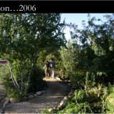 How permaculture can shape the built environment. Photos are from Tucson, Arizona, above 1994; below right -- 2006.